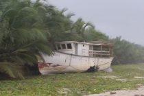 Playa Salguero siempre!